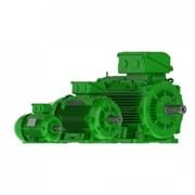 Электродвигатели W22 Чугунный корпус – Premium Эффективность - IE3