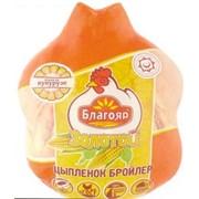 Мясо цыпленка бройлера, термопакет фото