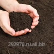 Доставка грунта по Барнаулу и пригороду фото