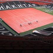 Уход за травяными спортивными газонами (donbass arena) фото