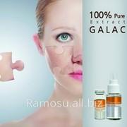 Сыворотка с экстрактом GALACTOMYCES 100% (Carestory Galactomyces Ferment Filtrate 100) фото
