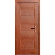 Двери деревянные Технократ Novak фото