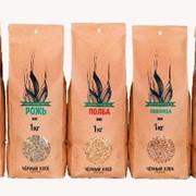 Пшеница БИО для проращивания 1кг фото