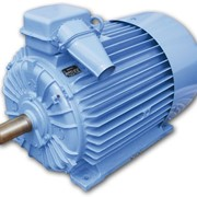 Асинхронный электродвигатель АО4-355s-12y2 фото