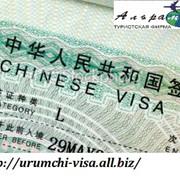 Оформление виз: индивидуальные, групповые, электронные, водительские