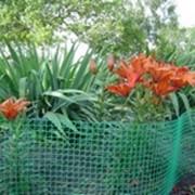 Сетки пластиковые для сада и огорода фото