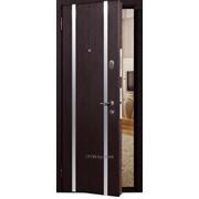 Двери металлические МЕГИ фото