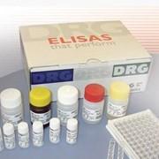 Тест-система иммуноферментного анализа DRG фото