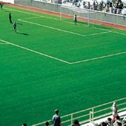 Трава искусственная для футбольных полей фото