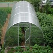 СверхпрочнаяТеплица из сотового поликарбоната 3х8 Доставка Большой выбор. фото