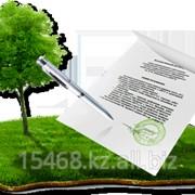 Земельный участок под строительство МЖС и коммерция до 10 соток фото