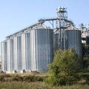 Силосные зернохранилища фото
