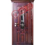 Стальная дверь Граф фото