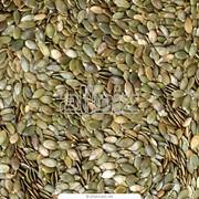 Ядра тыквенных семечек фото