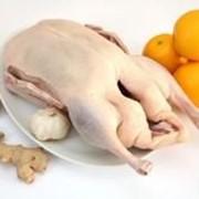 Мясо утки тушка фото