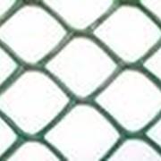 Сетки пластиковые для сада и огорода код Ф ячейка 55х58 фото