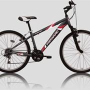 Велосипед Forward FLASH 102 фото