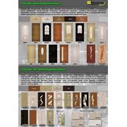 Двери ШПОН фото
