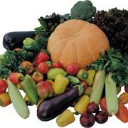 Семена овощей от КФХ БИРЛИК фото