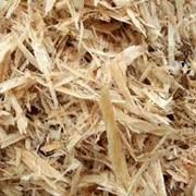 Стружка древесная фото