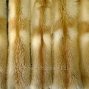 Мех сибирской рыжей лисы фото