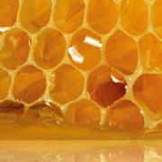 Пчелиный воск фото