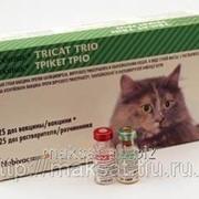 Вакцина Нобивак Tricat Triо 25 x 1D+dil фото