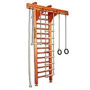 Комплекс спортивный домашний Kampfer Wooden Ladder Ceiling №3 Классический Стандарт фото