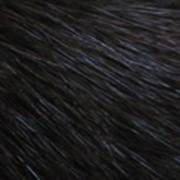 Выделанные шкурки норки фото
