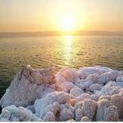 Мази лечебные - продукция Мертвого моря фото