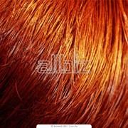 Окрашивание. Окрашивание волос. 3Д окрашивание фото