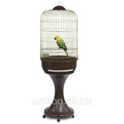 Клетка для попугаев с подставкой Imac Lory фото