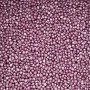 Мастербатч фиолетовый металик (POLYCOLOR VIOLET) фото