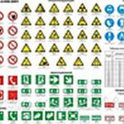 Знаки безопасности фотолюминесцентные фото
