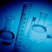 Каллистефин хлорид, 92%, (1 мг) фото