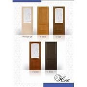 Двери Ника фото