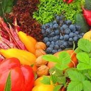 Хранилища для овощей и фруктов фото