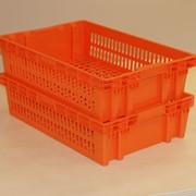 Пластиковые ящики ГК Дизайн Пласт фото