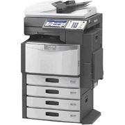 Распечатка документов формат А3 ч/б