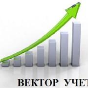 Сопровождение по бухгалтерскому, налоговому и кадровому учету ООО, АНО и ИП фото