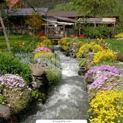 Средства защиты растений, купить, Одесса. фото