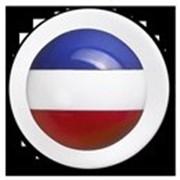 Пукли, пластиковые, с цветами французского флага, 12 шт. фото