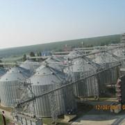 Хранение и подработка сельхозпродукции фото