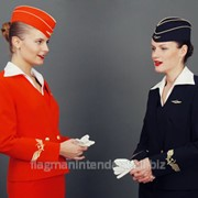 Форма стюардессы фото