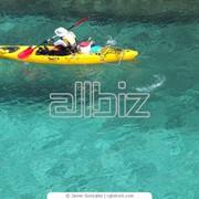 Туристическое агенство, туристическое агенство Альфа. фото