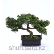 Бонсай искусственные деревья фото