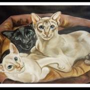 Портрет на заказ животные фото