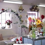 Флористическое оформление офисов фото