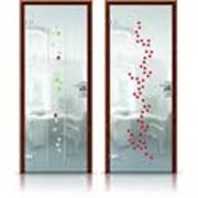 Раздвижные, межкомнатные, входные алюминиевые, металлические, металлопластиковые, стекляные двери. фото