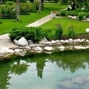 Обустройство водоемов и ручьев №2 фото